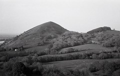 The Lawley (OhDark30) Tags: carl zeiss jena czj werra 3 tessar 2850 35mm film monochrome bw blackandwhite bwfp fomapan 200 rodinal thelawley hill shropshire hills evening landscape countryside fields woods shadows farm sheep