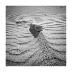 Wings of Wind (memories-in-motion) Tags: wings wind formation sand beach lines graphic structure texture south africa light shadow canon eos landscape minimalism black white waves desert 5dmarkiv ef1740mmf4lusm
