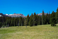 Gilbert and Tieton Peaks from Conrad Meadow (Ken Zaremba) Tags: cascademountains geography gilbertpeak goatrockswilderness northamerica outdooractivities outdoorsports snoqualmienationalforest tietonpeak unitedstates washington washingtonstate backpacking camping hiking meadow yakima geo:state=washington geo:location=unnamedroad geo:lon=12133086205556 geo:country=unitedstates geo:city=yakima geo:lat=46484446722222