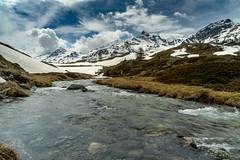 Spring in the mountains (jaeschol) Tags: berninapass europa europe graubuenden grischuna kalender2019 kantongraubünden kontinent schweiz suisse switzerland