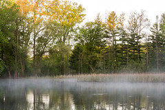 Fishing hole. (onepassenger) Tags: ricoh pentax k3ii sigma 1750mm f28 woodstock oxford county southern ontario fishing angling gordon pittock reservoir morning sunrise dawn mist fog moody lake