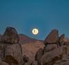 🌎 Joshua Tree, California, US |  Chris Burkard Photography (travelingpage) Tags: travel traveling traveler destinations journey trip vacation places explore explorer adventure adventurer