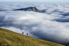 Ante la inmensidad (Jabi Artaraz) Tags: paisaje landscape montaña montañeros bruma niebla lainoa lekanda gorbea nature natura aire hierba belarra