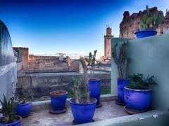 Atlas enneigé - Marrakech - Médina (delphine imbert) Tags: atlas maroc montagne neige froid ville marrakech médina tourisme couleurs paysage plantes grasses architecture poterie bleu