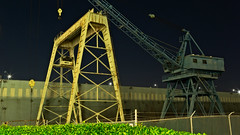 END OF THEIR CAREERS -509987- (Terry Frederic) Tags: buildings canon5dmkiii canonef24105mm crane lightroom614processed night on1effectsprocessed oregon photoshop portland sharpener2013 southwaterfront terryfrederic usa