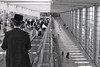 Departures (tatzlum.photo) Tags: charedi airport 50mm jew blackandwhite crowd eretzyisroel street orthodox telaviv chassid bengurion people monochrome israel chossid
