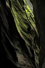 Aareschlucht - Schlucht der Aare ( Länge 1400 m - Höhe bis 180 m - Erschlossen seit 1888 - canyon gorge gola ) durch den Kirchet zwischen Innertkirchen und Meiringen im Haslital in den Alpen - Alps im Berner Oberland im Kanton Bern der Schweiz (chrchr_75) Tags: aareschlucht schlucht canyon kantonbern berner oberland berneroberland kanton bern alpen alps landschaft landscape meiringen innertkirchen hurni180513 christoph hurni schweiz suisse switzerland svizzera suissa swiss chrchr chrchr75 chrigu chriguhurni chriguhurnibluemailch albumzzz201805mai mai 2018
