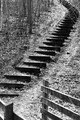 cavalier-3 (xtrice) Tags: escalier cavalierminier haillicourt pasdecalais france hautdefrance noiretblanc