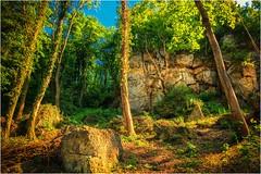 Wo das Einhorn lebt!? (linke64) Tags: thüringen deutschland germany natur landschaft felsen bäume wald altenburg bodendenkmal