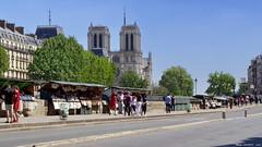 Paris, quai de Seine (Phil du Valois) Tags: paris urbain bouquiniste notre dame