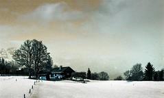 Combloux lomography turquoise 02 2018024 (Patrick.Raymond (4M views)) Tags: alpes haute savoie megeve comloux montagne neige froid gel bois arbre foret argentique nikon lomography turquoise