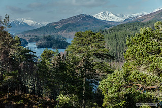 One of the finest views-Glen Affric looking west.