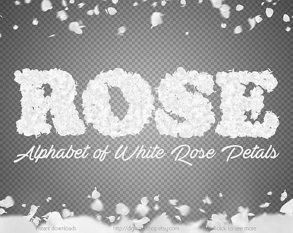 The worlds most recently posted photos of etsy and letters flickr letters of white rose petals digital alphabet and numbers from white flower petals font gumiabroncs Choice Image