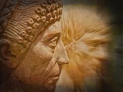 my nose is Roman (Bobinstow2010) Tags: roman people oxford ashmolean museum artifact face stone sculpture arty topaz photoshop