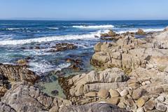 IMG_8434 (boguscoder) Tags: pacificgrove california unitedstates us
