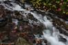 Wahkeena Falls, October 2015 (Gary L. Quay) Tags: wahkeena falls waterfall wahkeenafalls oregon columbia river gorge hcrh historic highway nikon d300 gary quay