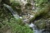 _DSC0482 (2) (Me now0) Tags: бачковскиводопад bachkovowaterfall rodopi mountain europe bulgaria nikond5300 18140nikontravelzoom
