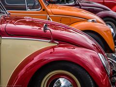 Bi-Colour (katrin glaesmann) Tags: maikäfertreffen volkswagen käfer beetle classiccar oldtimer messegelände laatzen hannover hoods colours window