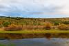 Humedal (Jorge Barahona) Tags: mallin chile patagonia humedal