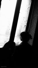 tras la ventana (alejandromohedano) Tags: altocontraste blanco y megro barrido texturas del orden caos