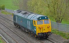 D407 (Trev 'Big T' Hurley) Tags: 0v65 407 50007 brblue hercules v16 ee englishelectric portway orangesquare class50 50 vac log