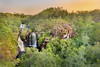 Home of Florence Falls (Louise Denton) Tags: litchfield outback bush green waterfall cascades water darwin nt australia explore florencefalls waterfalls cliff escarpment sunset yellow glow