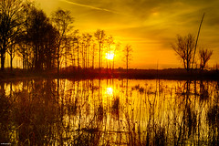 Sunset reflection (metsemakers) Tags: refections reflectie water bomen tree nederweert debanen sony a58 alpha