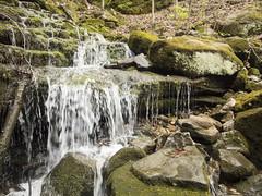 RED03024 (David J. Thomas) Tags: caves caving hiking speleology class students twinfalls camporr jasper waterfall creek stream karst arkansas lyoncollege