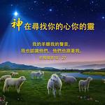 圣经金句-我的羊听我的声音 thumbnail