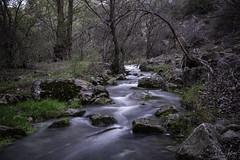 Flowing. (Andrés Gallego) Tags: aliaga allepuz central d750 teruel tamron longexposure long lriver water agua rio naturaleza nature green 2470 2470mm