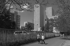 L1000905 (amansjeanphilippe) Tags: summicron35i xiii arrondissement paris 13eme architecture leica amansjeanphilippe