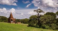 El espiritu de Bagán (Nebelkuss) Tags: myanmar bagán asia birmania burma paisaje landscape templo temple nubes clouds hierba grass arbol tree fujixt1 fujinonxf1855