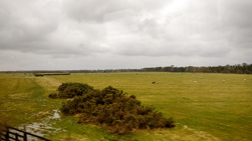 On the train from Newcastle to Edinburgh