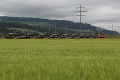 SBB Lokomotive Re 4/4 II 11329 bzw. 420 329 - 5 mit Panzerzug 69946 T.hun G.B - B.ure C.asernes ( 134 m - 474 t ) mit Schützenpanzer Spz 2000 bei Kiesen im Kanton Bern der Schweiz (chrchr_75) Tags: schweiz switzerland suisse swiss mai christoph svizzera 2018 suissa chrigu chrchr hurni chrchr75 chriguhurni chriguhurnibluemailch albumzzz201805mai train eisenbahn zug bern bahn treno kanton bahnen kantonbern albumbahnenderschweiz albumbahnenderschweiz20180106schweizer hurni180513 de tren railway locomotive chemin centralstation fer locomotora tog juna lokomotive lok ferrovia spoorweg locomotiva lokomotiv ferroviaria 鉄道 locomotief поезд rautatie паровоз zoug trainen железнодорожный tank schweizer armee panzer armatura militär armure 鎧 landesverteidigung