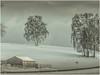 im Winter (ernst.koeppel) Tags: winter birke birken trees dorf landschaft landscape village scheune snow schnee