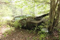 IMG_5856 (mookie427) Tags: urbex urban explore exploration explorers exploring ue derelict abandoned decay decayed ruin ruined car graveyard scrapyard old junkyard rusty rusted classic cars city georgia usa