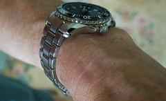 RCS07526 - Grand Seiko SBGA 231 wrist shot (CraigShipp.com Photos - Events / People / Places) Tags: titanium