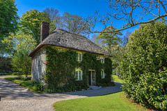 Little House (JKmedia) Tags: lanhydrock nationaltrust cornwall spring bluesky green house home kitchen store ivy