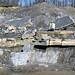 Lower Mercer Limestone (Middle Pennsylvanian; Frazeysburg Pit, Muskingum County, Ohio, USA) 14