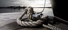 Harbour (zaid167) Tags: harbourwealthmanagement wealthmanagement dubai