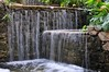 Waterfall in the Orto Botanico (TrainsandTravel) Tags: italy italia italie italien sardinia sardaigne sardinien sardegna cagliari ortobotanico