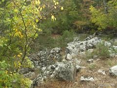 Крим, Таврські могильники на горі Кішка InterNetri Ukraine 2009 150