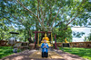 Wat Tonpho (rung_sirapat) Tags: wat temple วั วัดต้นโพธิ์ ต้นโพธิ์ ปราจีนบุรี ศรีมโหสถ หรั่ง สิรภัทร แซ่ย่าง rung sirapat saeyang rungsirapat travel traveller tourist sunny buddha image buddhism bless