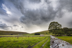 The Wall (Joost10000) Tags: yorkshire dales yorkshiredales nationalpark uk unitedkingdom greatbritain europe england wall drystone grass fields clouds sky mountain mountains outdoors natur nature landschaft green barn tree scenic beauty canon canon5d eos landscape field track