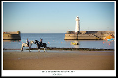 Friendship (Kyle TKT) Tags: frends friendship horse horses beach water sand lighthouse pier donaghadee sea ocean sky rider jockey girls boats horizon