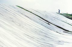 jemur kain (kuuan) Tags: indonesia voigtländerheliarf4515mm manualfocus mf voigtländer15mm aspherical f4515mm superwideheliar apsc sonynex5n solo surakarta street java white pattern repeatingpattern bekonang jemurkain