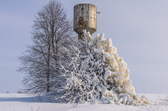 The water tower frosted in winter. The tree is iced (ivan_volchek) Tags: winter snow tree landscape cold frost sky forest nature white blue trees frozen ice scene christmas season snowy field frosty scenery park road branch day weather snowwhite outdoors wood travel visiting scenic sight