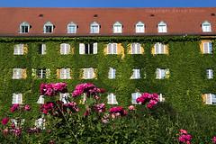 Borstei (bzmch) Tags: münchen munich deutschland germany houses siedlung architektur