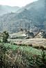 Bhutan: Rice Terraces II. (icarium82) Tags: bhutan travel captureone farmhouse forest gasavalley himalayas nature naturallight rural canoneos5dsr canonef1635mmf4l
