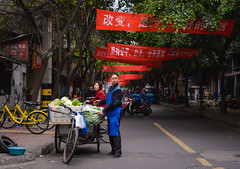 Cabbage for Sale (Ash and Debris) Tags: guy market asia seller street people city bike look china citylife streetlife cabbage man urban citizen chengdu urbanlife bicycle transparency asians bikes sign signs